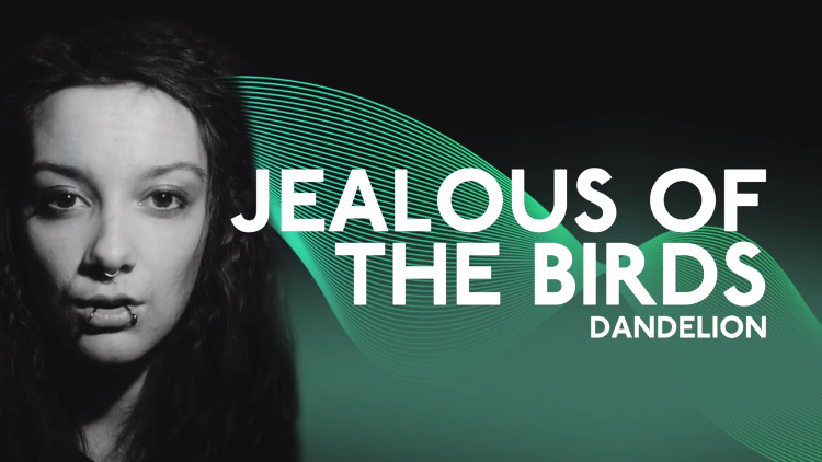 Jealous of the Birds - Dandelion